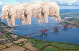 Thumbnail image for elephantbridge.jpg