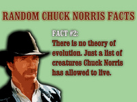 chucknorrisevolution.jpg