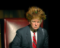 Thumbnail image for trumphaircheckinfo.jpg